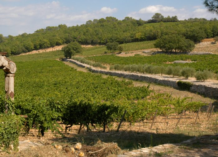 Provence Rosé: Preserving Brand Mystique Despite France's Smallest Harvest in 30 Years